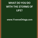 What Do You Do with the Storms of Life?
