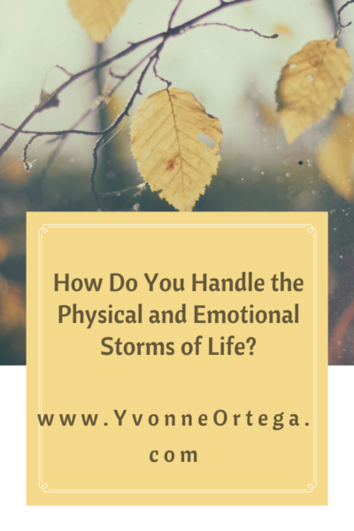 How Do You Handle the Physical and Emotional Storms of Life?